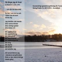 Så länge jag är kvar © Alejandra Lundén 2015